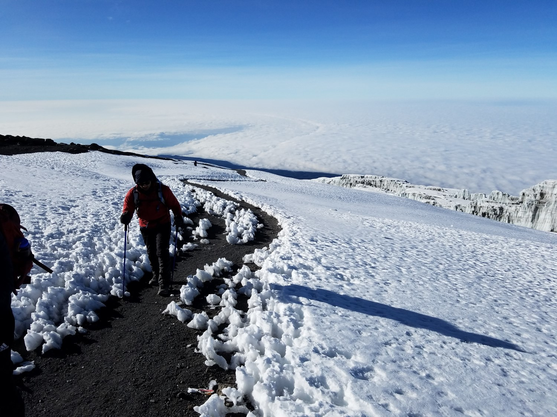 American_University_of_Sharjah_Kilimanjaro_-_46.jpg