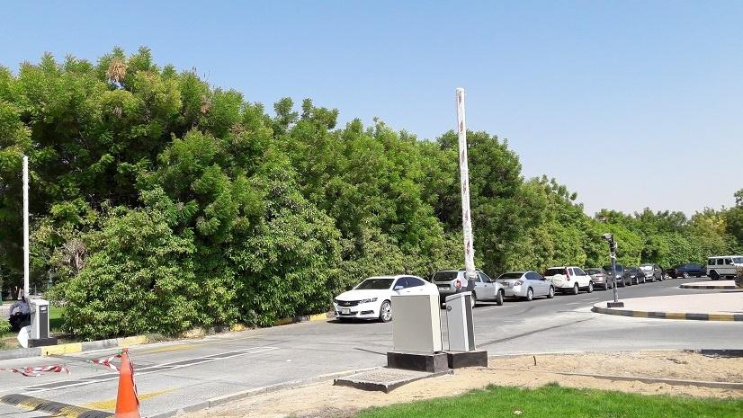 American_University_of_Sharjah_Traffic_Study_2.jpg